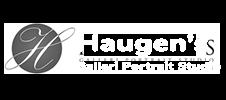 Haugens Galeri - Music in the Park Sponsor